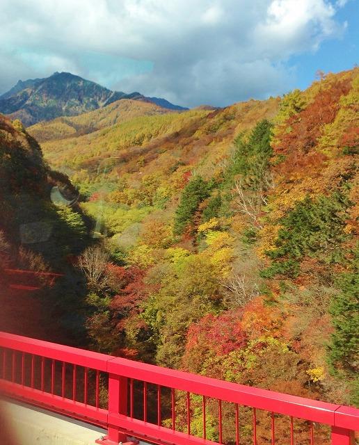 東沢大橋から見た紅葉