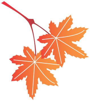 11月11日は『介護の日』